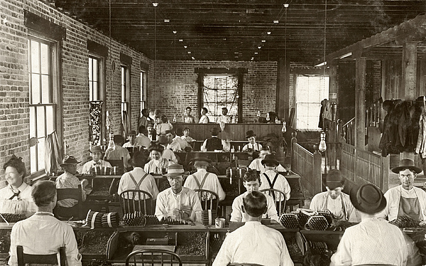1909 Photograph - Cigar Factory, 1909 by Granger