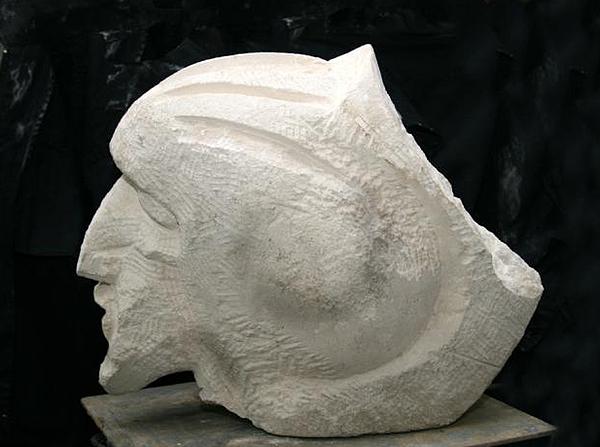 Cinevaa Sculpture by Bucalau  Andrei