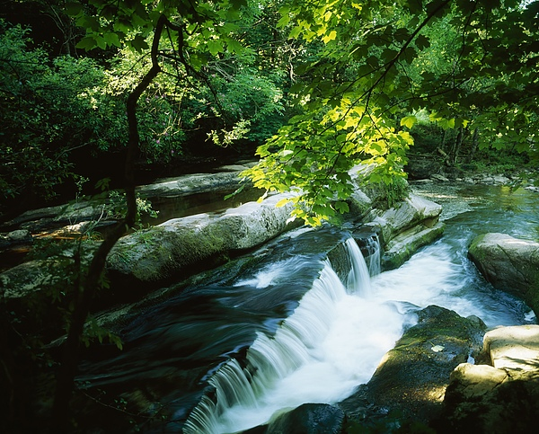 Motion Blur Photograph - Clare Glens, Co Clare, Ireland by The Irish Image Collection