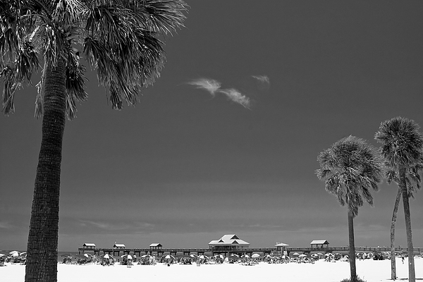 B&w Photograph - Clearwater Beach Bw by Adam Romanowicz