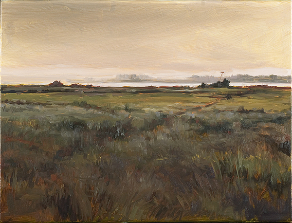 Landscape Painting - Coastal Residence by Chas Fagan