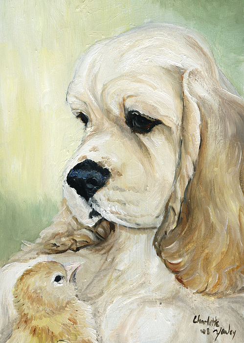 Dog Painting - Cocker Spaniel And Chick by Charlotte Yealey