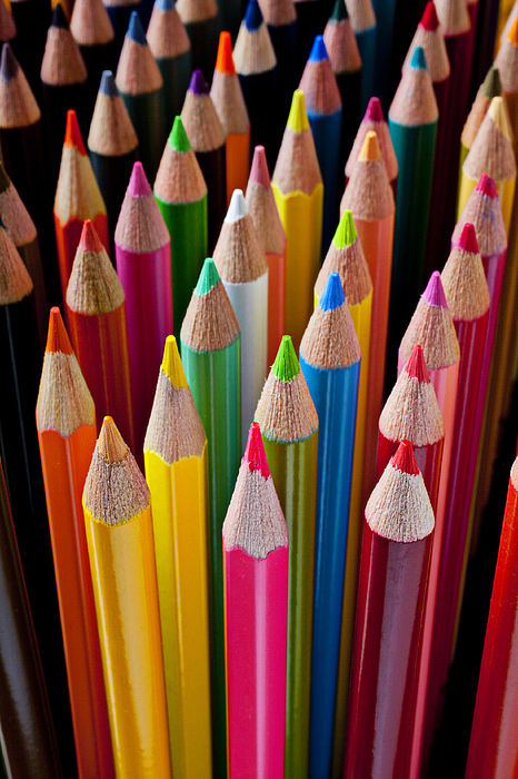 Pencil Photograph - Colored Pencils by Garry Gay
