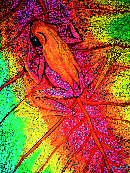 Frogs Digital Art - Colorful Frog On Leaf by Nick Gustafson
