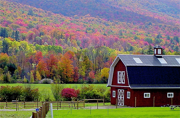 Fall Photograph - Colors Of New England by Rick  Monyahan