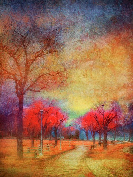 Trees Photograph - Colour Burst by Tara Turner