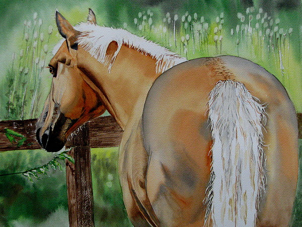 Horse Painting - Comet by Maria Barry