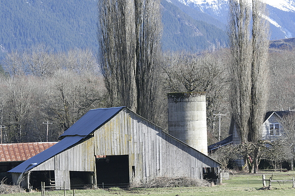 Barn Photograph - Concrete Barn Br-2003 by Mary Gaines