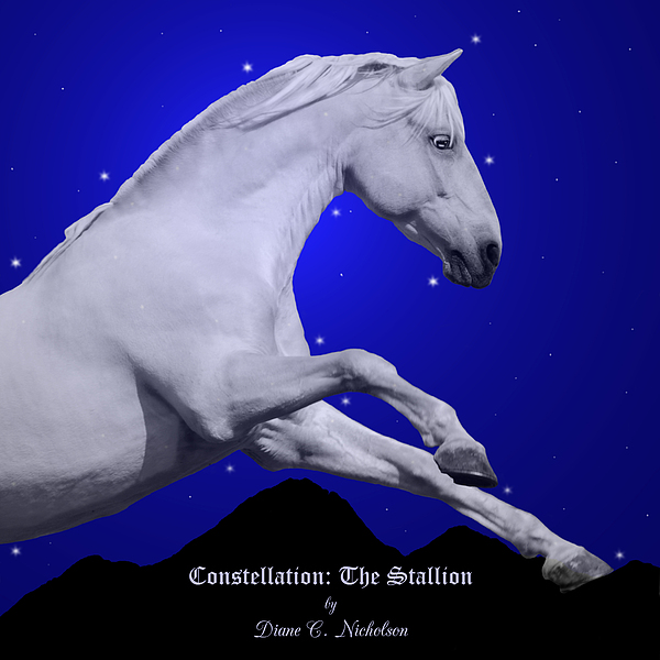 Horses Photograph - Constellation The Stallion by Diane C Nicholson