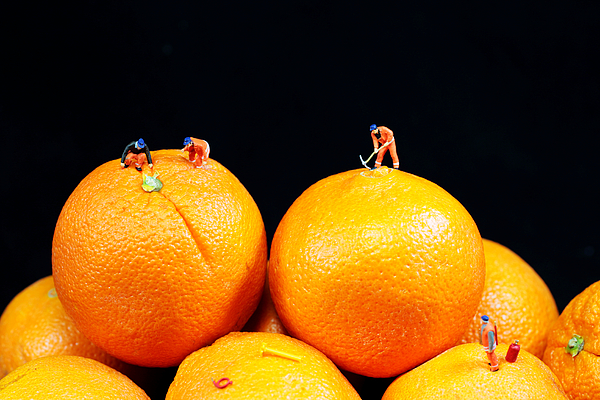 Surreal Photograph - Construction On Oranges by Paul Ge