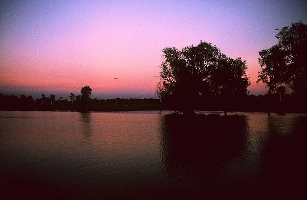 Cooinda Photograph - Cooinda Sunrise by Gary Wonning