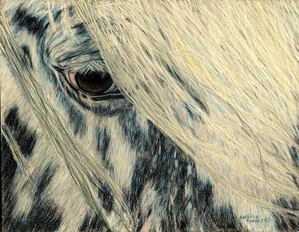 Pony Painting - Cookies Eye by Angela Finney