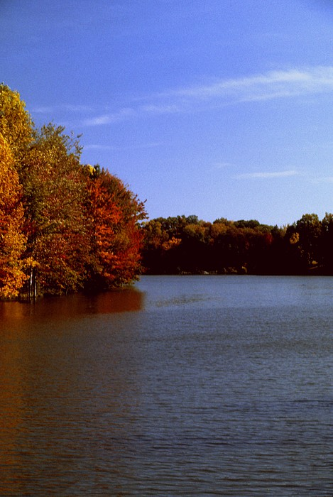 Indiana Photograph - Coonhunters Lake by Gary Wonning