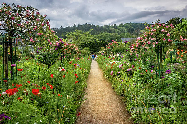 Liesl Walsh - Cottage Garden Path in Giverny, France