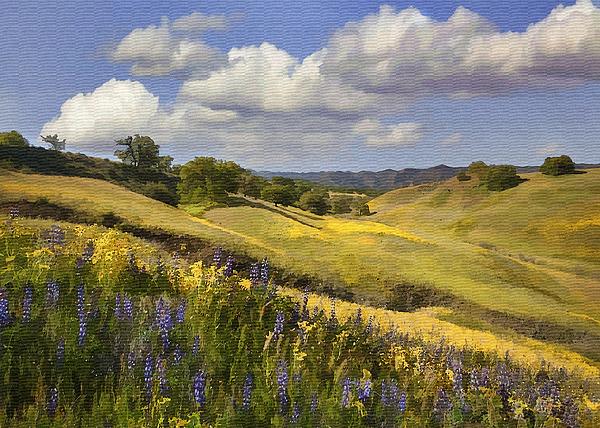 Lupine Digital Art - Cottonwood Canyon by Sharon Foster