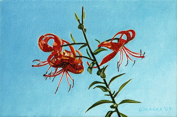 Tiger Lily Painting - Cotttage Tiger Lilies by Allan OMarra