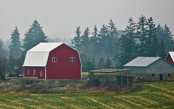 Barn Photograph - Countryside Red Barn by Liz Santie