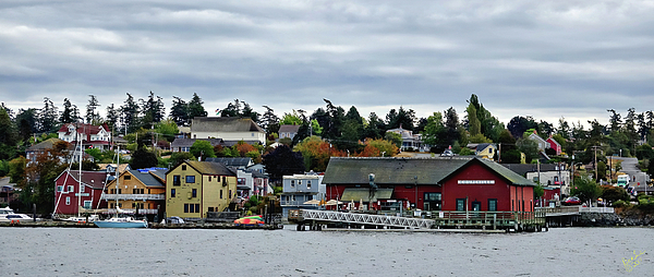 Coupeville Photograph - Coupeville Delight by Rick Lawler