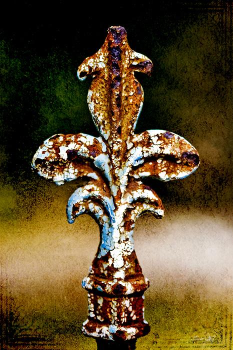 Iron Photograph - Court Jester by Scott Pellegrin