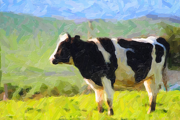 Cow Photograph - Cow On A Hill by Wingsdomain Art and Photography