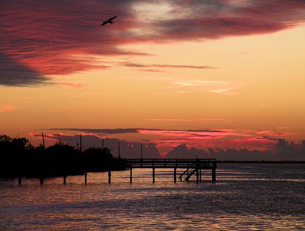 Sunsets Photograph - Cranberry Sunset by Rosalie Scanlon