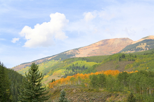 Nature Photograph - Crested Butte by Jessie Foster