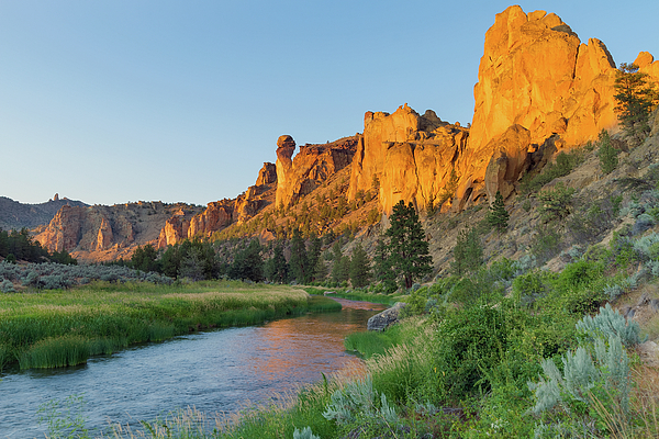 Monkey Face Photograph - Crooked River And Monkey Face At Smith Rock by David Gn