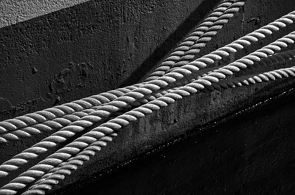 Crossed Ropes Photograph by William Haney