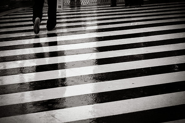Adult Photograph - Crosswalk In Rain by photo by Jason Weddington