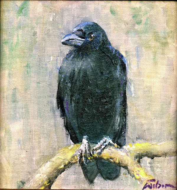 Crow Painting - Crow Vigilant by Ron Wilson