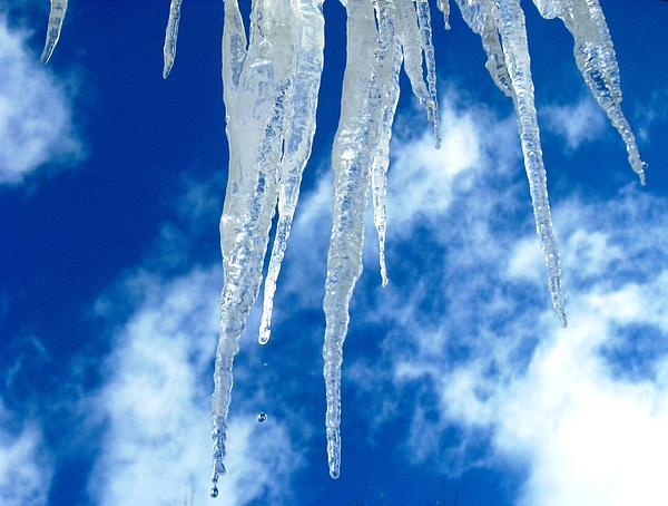 Icicles Photograph - Crystal Blue by Angela Davies