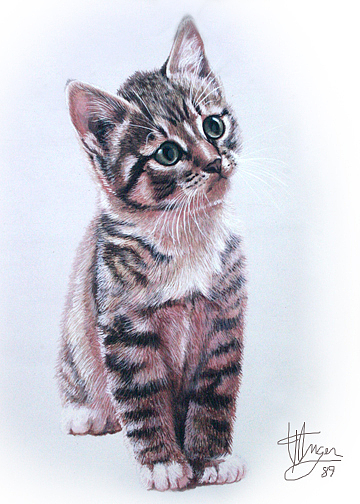Cat Painting - Curious Kitten by Theresa Unger