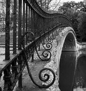 Elizabeth Park Trenton Photograph - Curlz IIi  by Angeys Photography