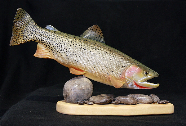 Salmon Sculpture - Cutthroat Trout On The Rocks by Eric Knowlton