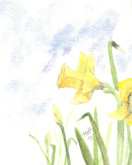 Daffodils Painting - Daffodils by Denise   Hoff