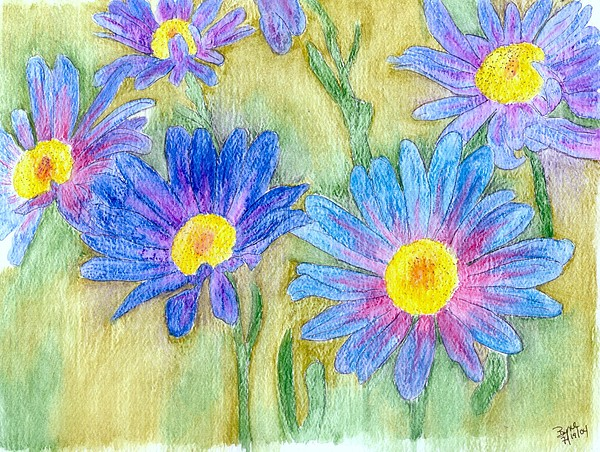 Flowers Painting - Daisey Field by Margie  Byrne