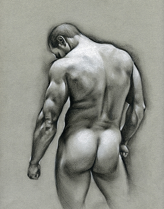 Male Drawing - Dan by Chris Lopez