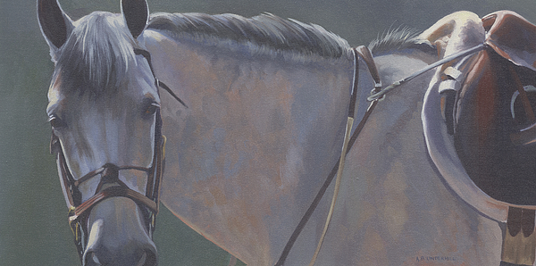 Horse Painting - Dapple In Sunlight by Alecia Underhill