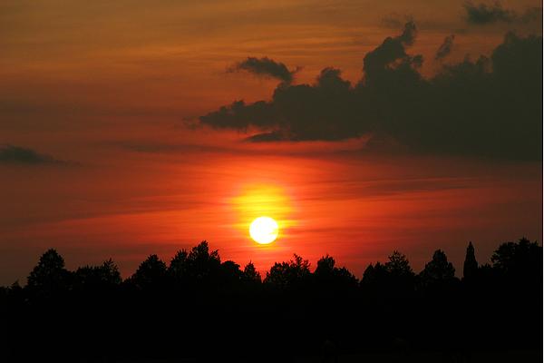 Nature Photograph - Dark Sunset by Peg Urban