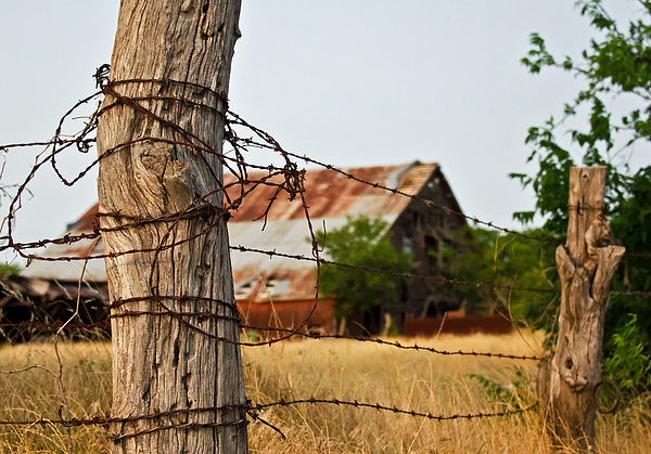 Fence Photograph - Days Gone By by Lisa Moore