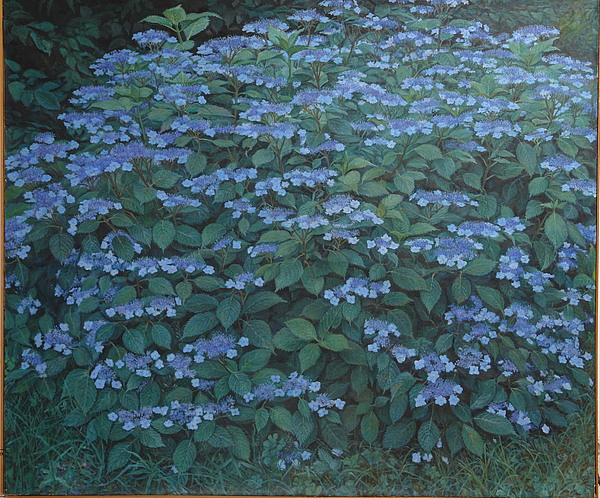 Outdoor Still Life Painting - Debis Hydrangea by James Sparks