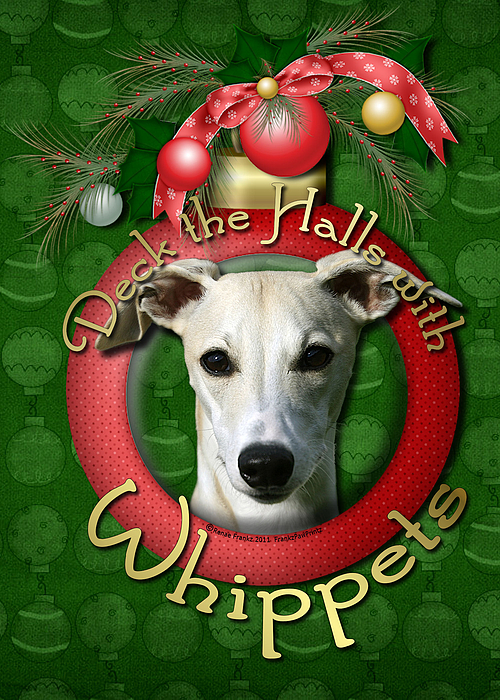 Whippets Digital Art - Deck The Halls With Whippets by Renae Laughner
