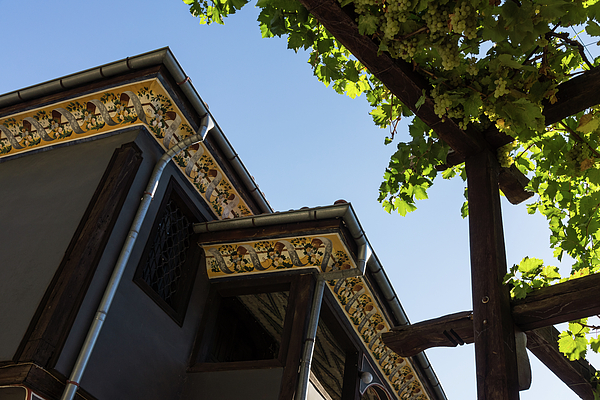 Grape Photograph - Decorated Eaves And Grapes Trellis - Old Town Plovdiv Bulgaria by Georgia Mizuleva
