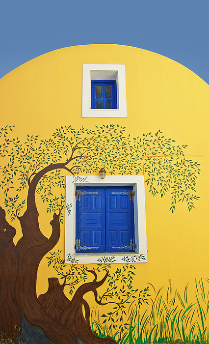 House Photograph - Decorated House by Meirion Matthias