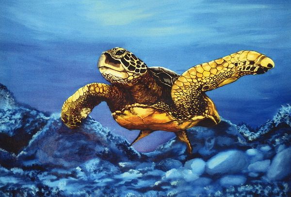 Turtle Painting - Deep Blue by Kathleen Kelly Thompson