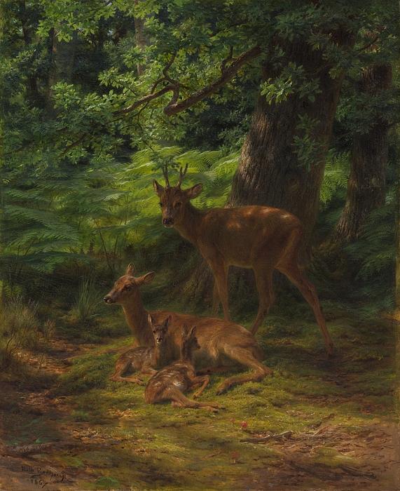 Deer Painting - Deer In Repose by Rosa Bonheur