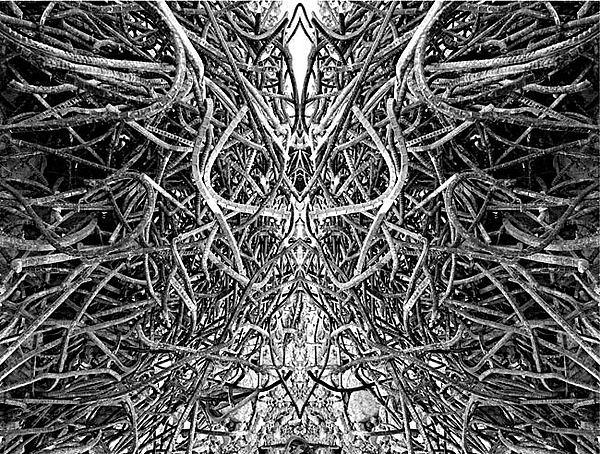 Abstract Photograph - Density-036 by Yehan Wang