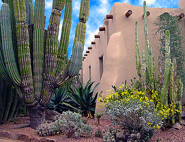 Southwest Photograph - Desert Garden by Richard Eller