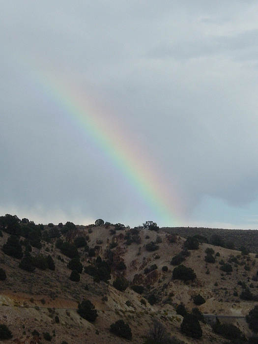Rainbow Photograph - Desert Rainbow by JoAnn Tavani