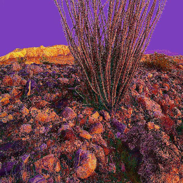 Landscape Photograph - Desert Vision by Dean Uhlinger